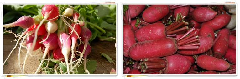 HEALTHY ORGANIC FOODS FOR SALE