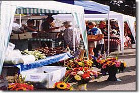 gazebo-showcase-flowerstall