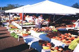 gazebo-showcase-fruit-stall