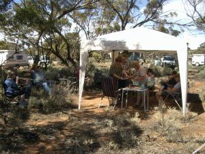 gazebo-showcase-picnic-at-the-wild