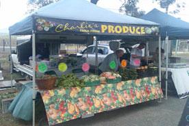 gazebo-showcase-vegetables-stalls.jpg