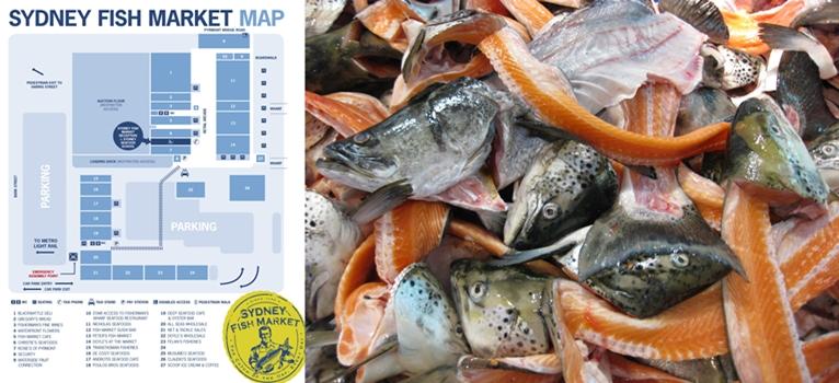 SYDNEY FRESH FISH MARKET